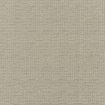 Easy Living Performance Fabrics C8-57 Coconut